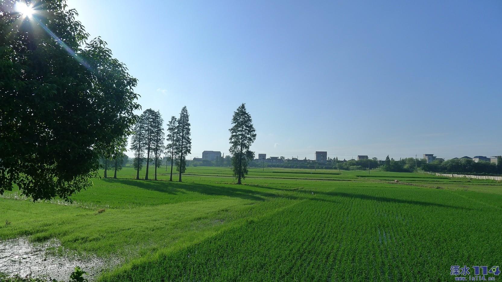 Day19:樟树~南昌